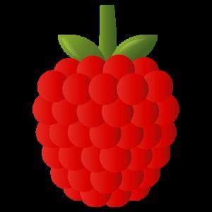 frutos rojos - superalimentos para la diabetes